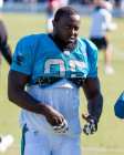 Panthers Release DE Charles Johnson