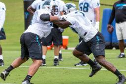 Photos: Carolina Panthers Practice Week 3
