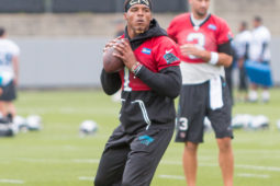 Carolina Panthers Week 2 OTAs Recap